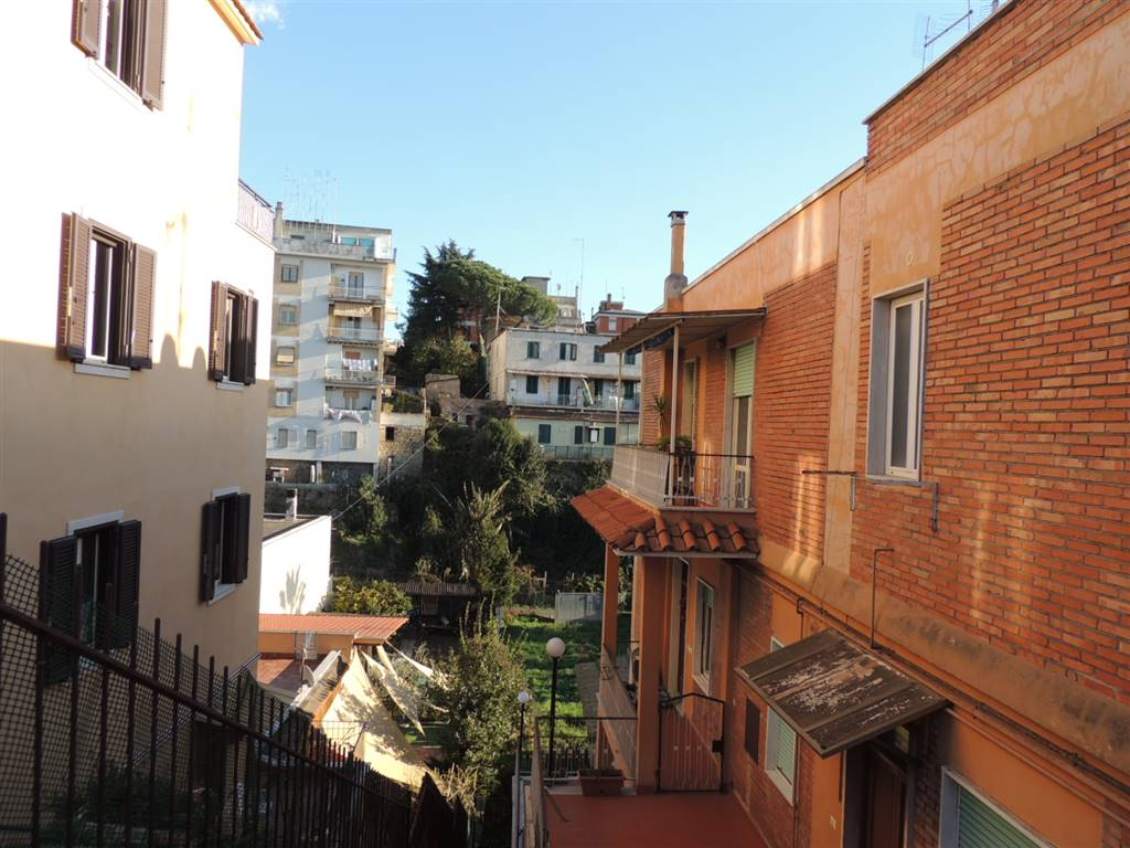 Palazzo, Boccea, Torrevecchia, Pineta Sacchetti, Roma