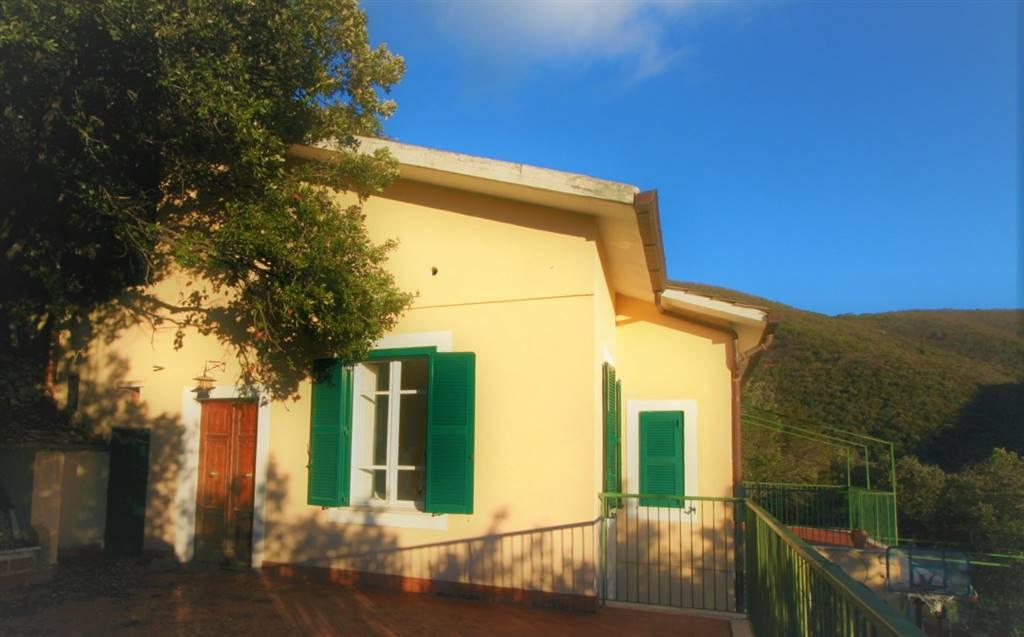 Villa, Poggio Catino, abitabile