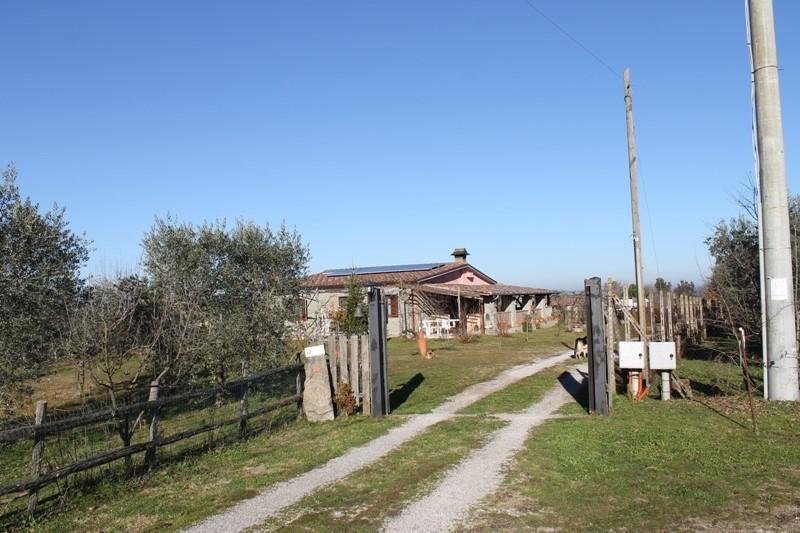 Rustico casale in Contrada Fornacchia, Soriano Nel Cimino