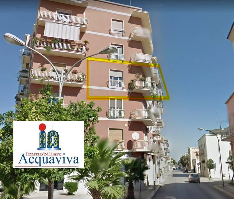 Vai alla scheda: Appartamento Vendita - San Ferdinando di Puglia (BT) - Codice -2454RA26264