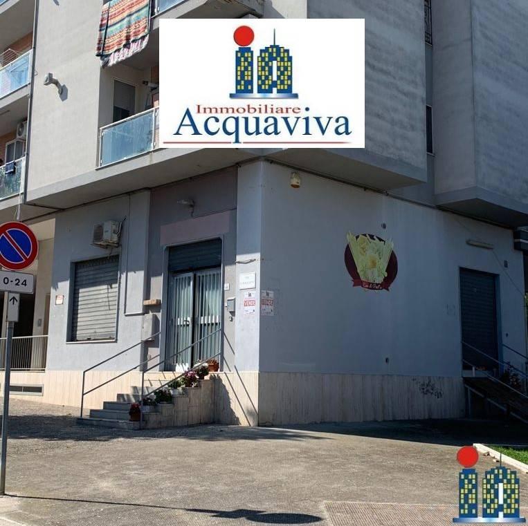 Vai alla scheda: Attività Commerciale Vendita - San Ferdinando di Puglia (BT) - Codice -2454CA50698