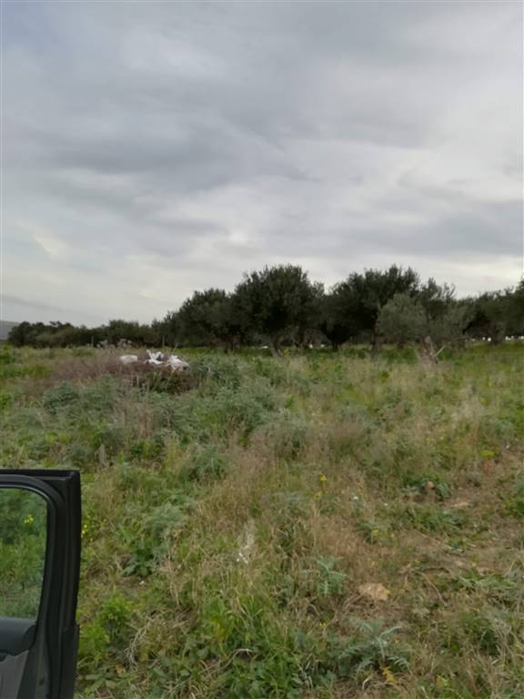 Farming plot of land in SALEMI 5000 Sq. mt.