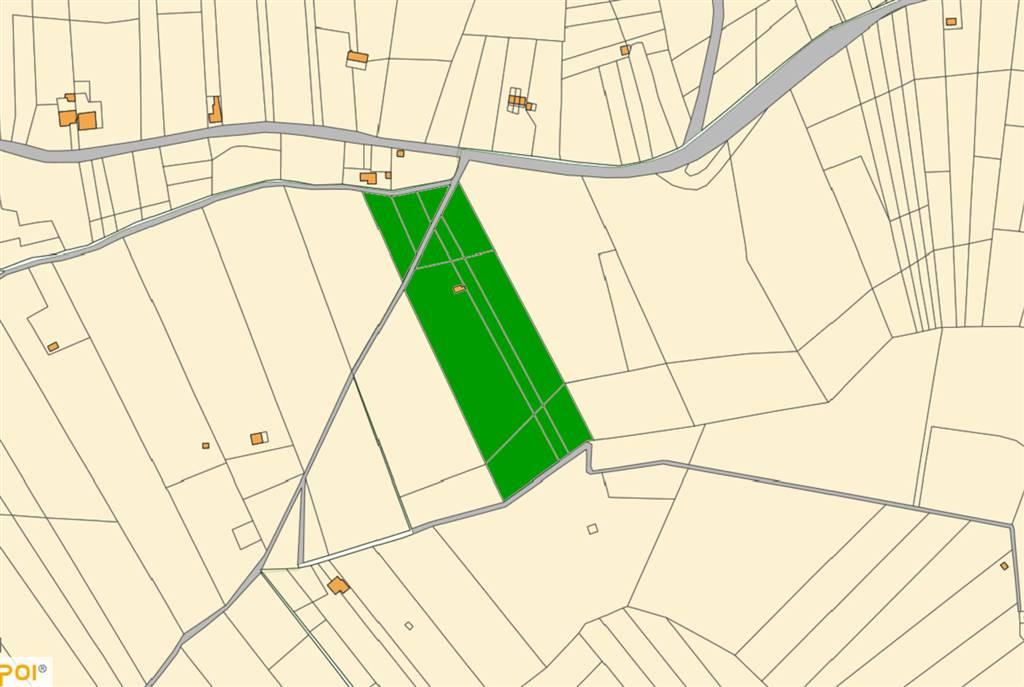 Terreno agricolo a SALEMI 20000 Mq