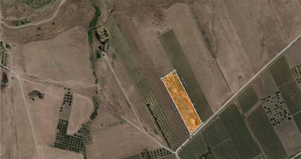 Terreno agricolo a SALEMI