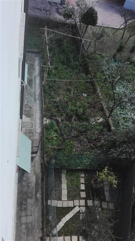 SCOPERTO ESCLUSIVO - Rif. V0490