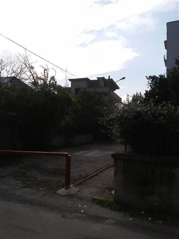 Foto ID 15724491