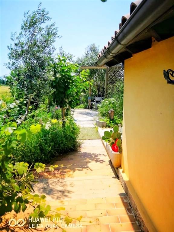 Rustico / Casale in vendita a Spineto Scrivia, 3 locali, prezzo € 45.000   PortaleAgenzieImmobiliari.it