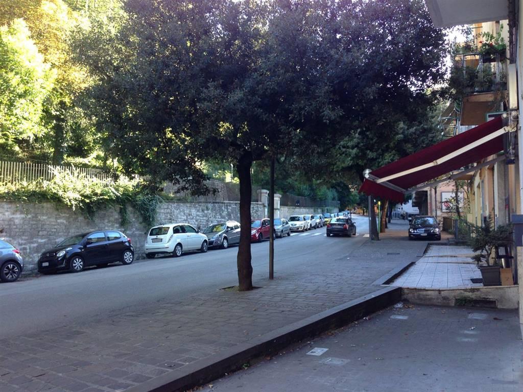 Bilocale, Via Mazzini, Potenza, abitabile