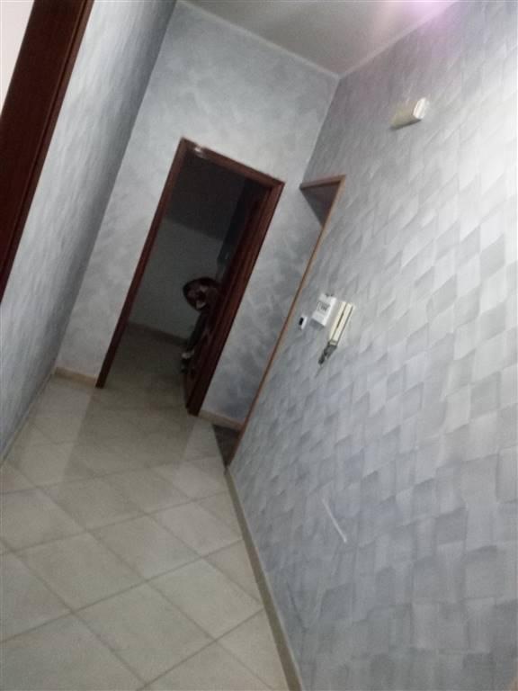 Foto ID 14153699