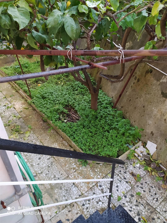 Appartamento in affitto a Pozzuoli, 3 locali, zona Località: POZZUOLI, prezzo € 800 | CambioCasa.it