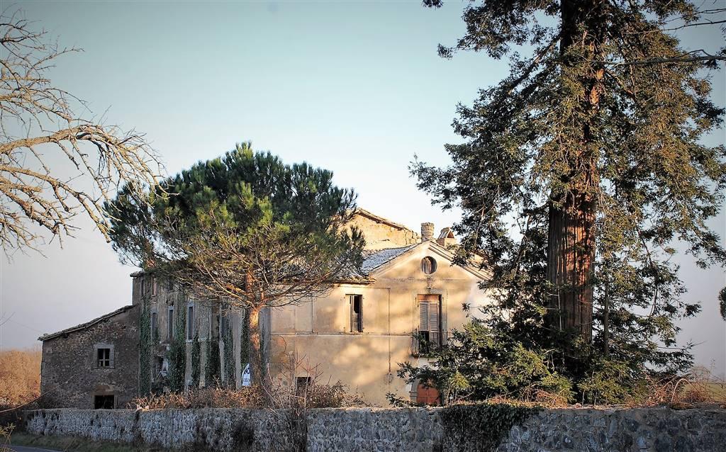 Rustico / Casale in vendita a Bagnoregio, 30 locali, prezzo € 650.000   CambioCasa.it