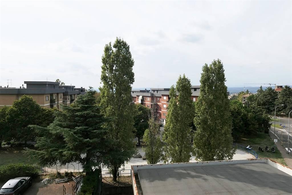 vista - Rif. 971