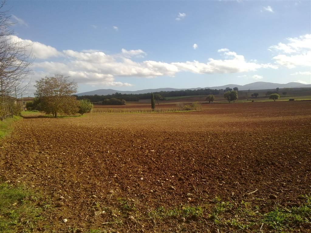 Terreno edificabile a SAN GIMIGNANO