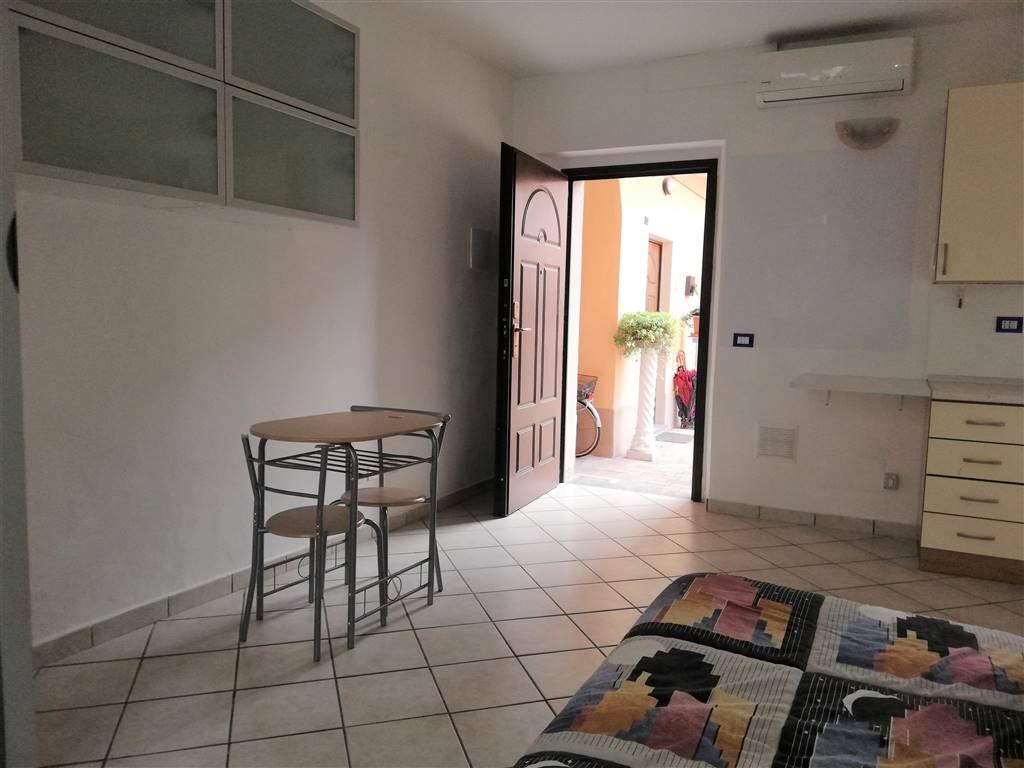 Comoda soluzione costituita da un unico locale con cucina a vista, letto singolo, armadio, tavolo con sedie ed infine ampio bagno con doccia .