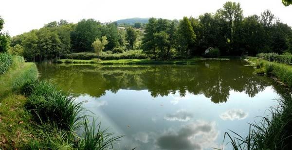 Terreno Edificabile Residenziale in vendita a Acquanegra sul Chiese, 9999 locali, prezzo € 350.000 | CambioCasa.it