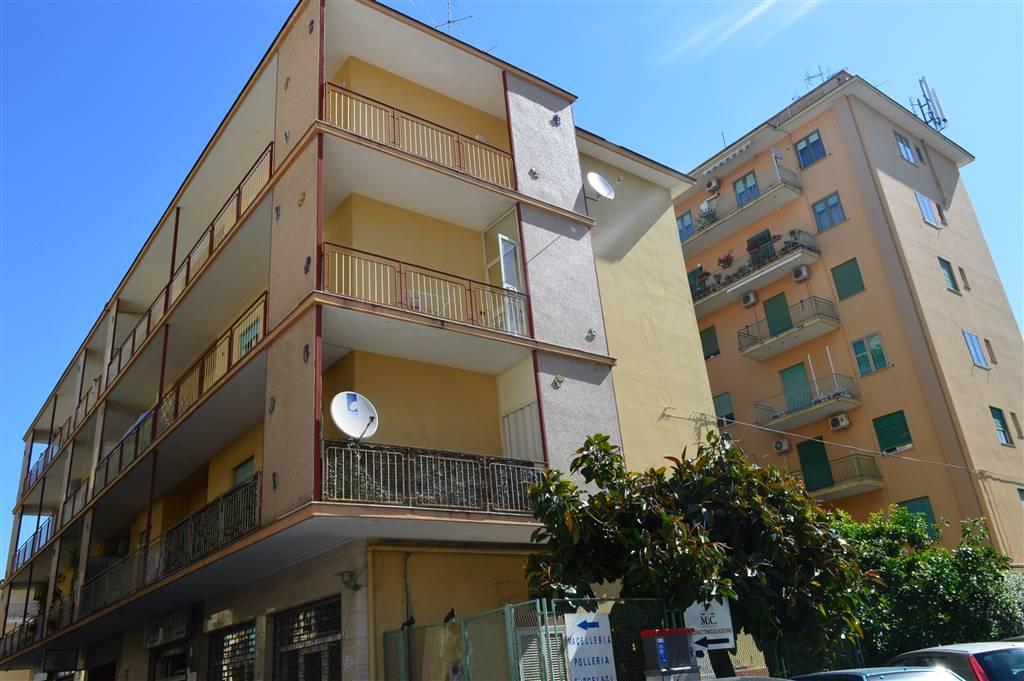 AV856-Appartamento-SANTA-MARIA-CAPUA-VETERE-Traversa-Via-Mario-Fiore