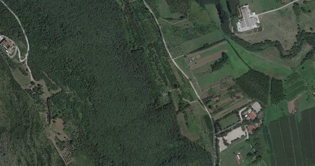 TV005b-Terreno-PONTELATONE-via-vicinale-dei-mulini-