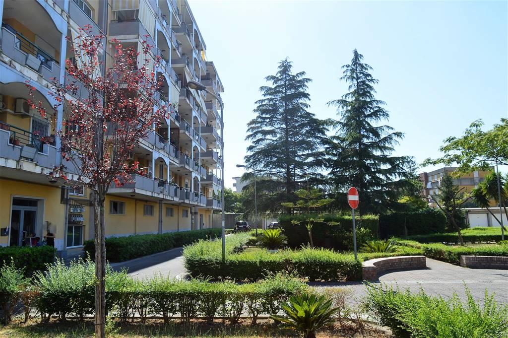 av858-Appartamento-SANTA-MARIA-CAPUA-VETERE-Via-Della-Valle