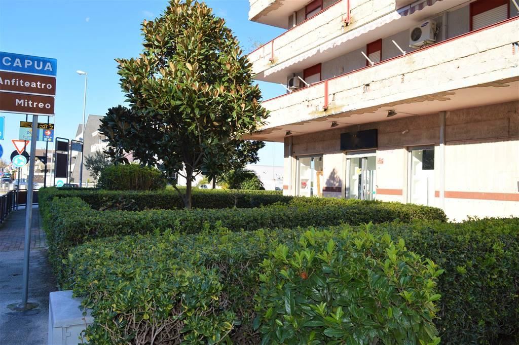 LF205-Locale Commerciale-SANTA-MARIA-CAPUA-VETERE-VIALE-CONSIGLIO-D'EUROPA