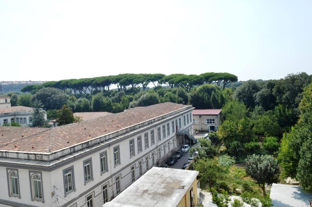 ufc029a-Ufficio-CASERTA-Corso-Giannone