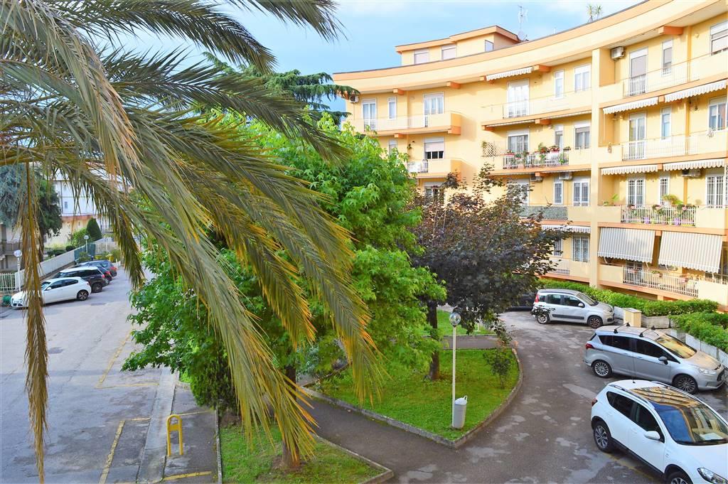 AFC781-Appartamento-CASERTA-Via-Martiri-di-Bellona