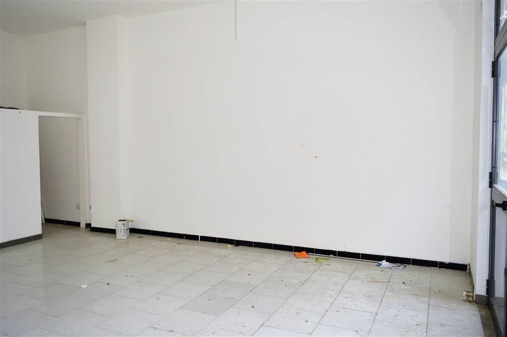 LF179A-Locale Commerciale-SANTA-MARIA-CAPUA-VETERE-via-jan-palach