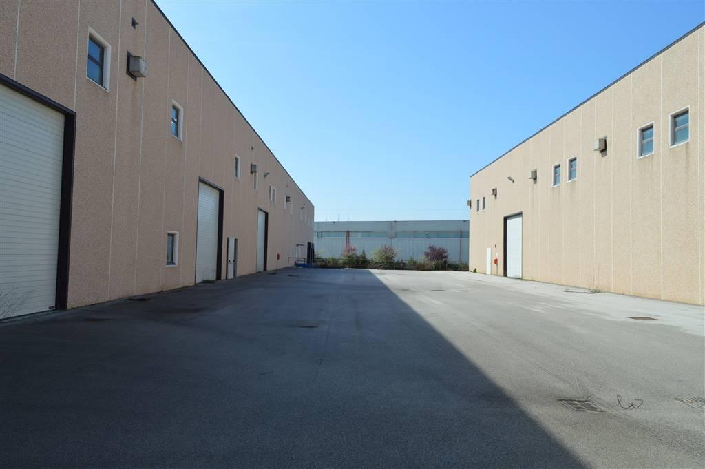 CV234A-Capannone-PASTORANO-contrada-torre-lupara