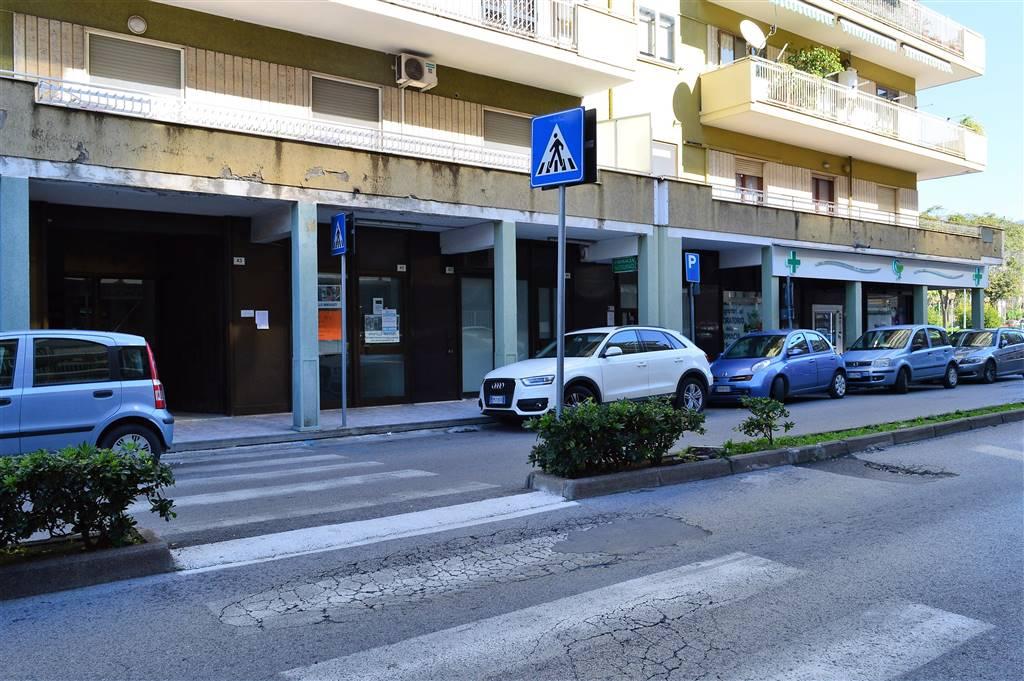 LF192A-Locale Commerciale-SANTA-MARIA-CAPUA-VETERE--