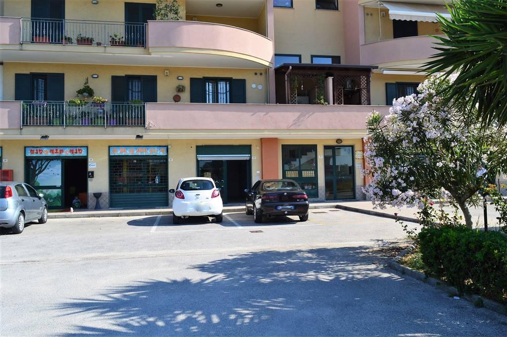 LV043A-Locale Commerciale-SANTA-MARIA-CAPUA-VETERE-Via-Generoso-Iodice