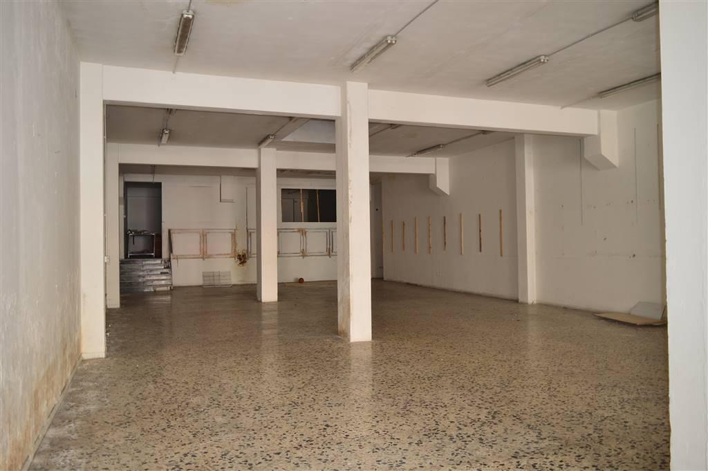 LF200B-Locale Commerciale-SANTA-MARIA-CAPUA-VETERE-Via-Alcide-de-Gasperi