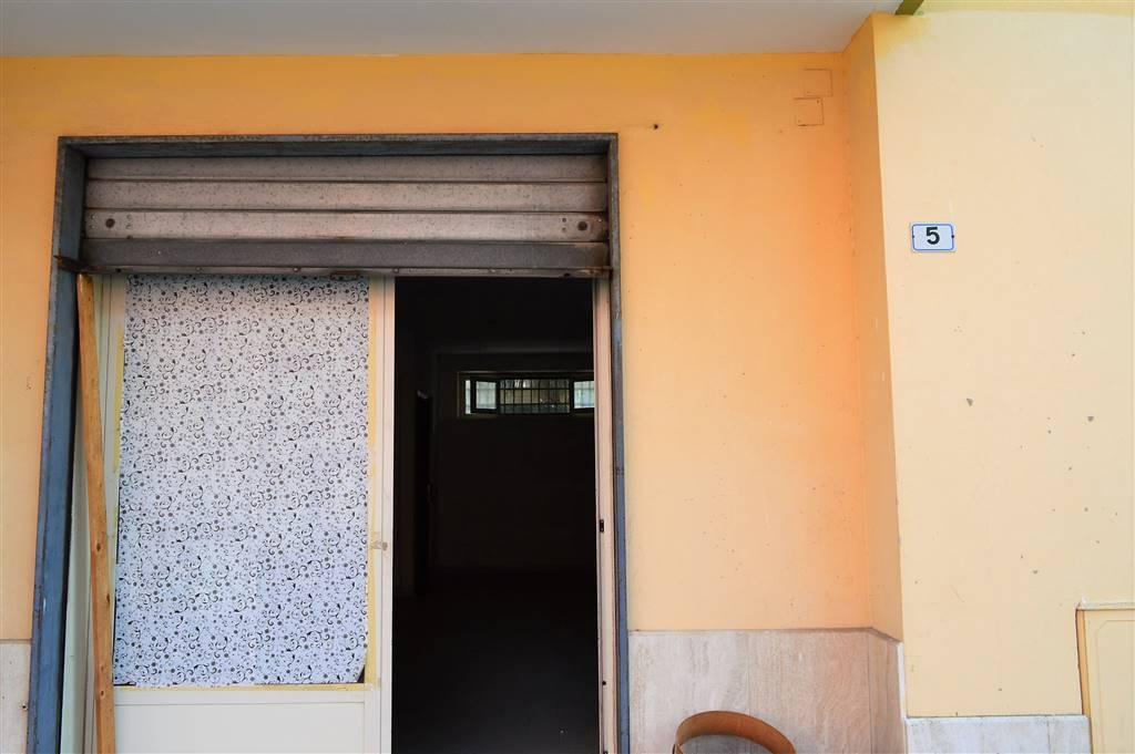 LF223-Locale Commerciale-PORTICO-DI-CASERTA-Via-Tiziano