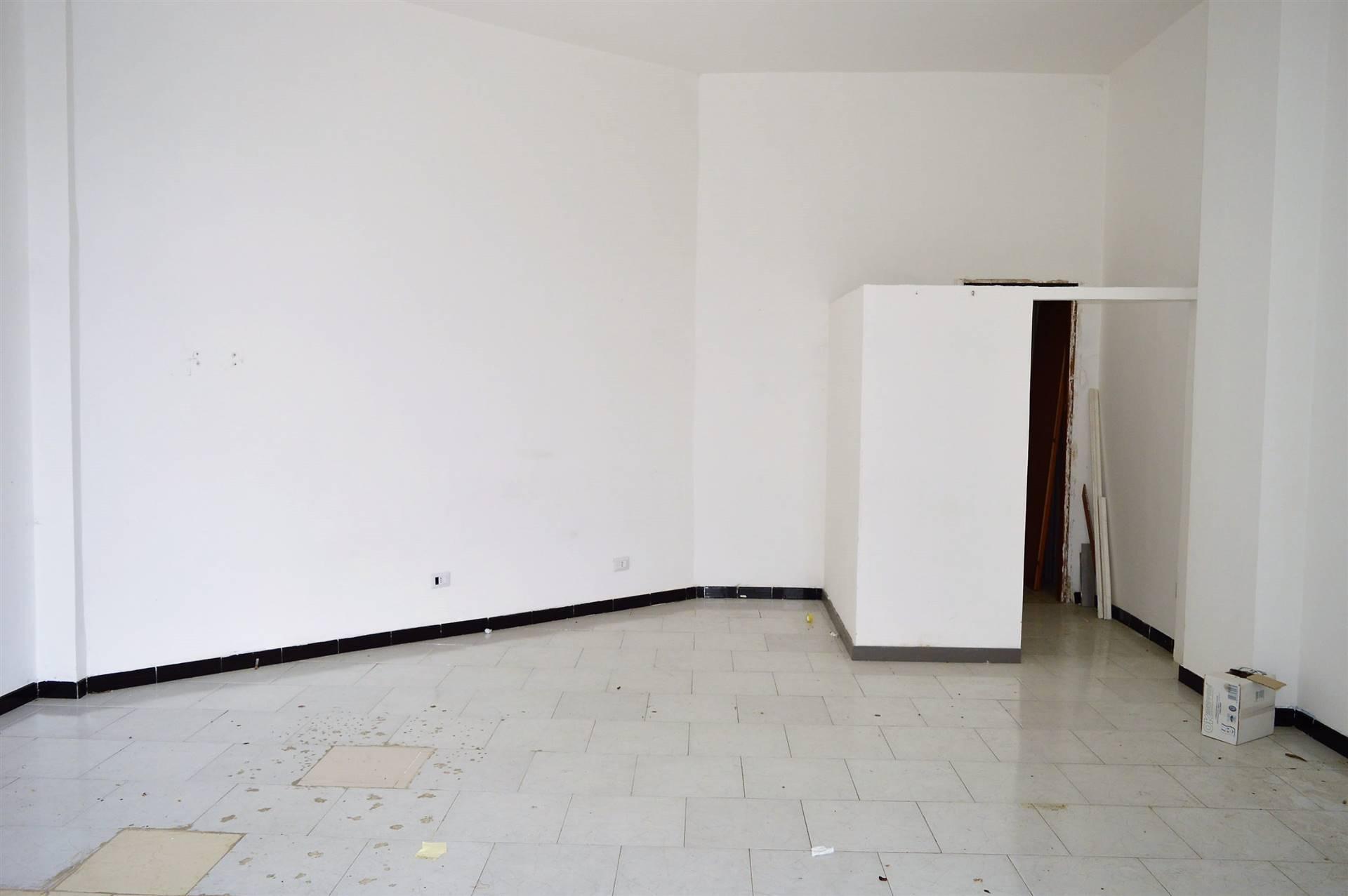 LF179C-Locale Commerciale-SANTA-MARIA-CAPUA-VETERE-Via-Jan-Palach