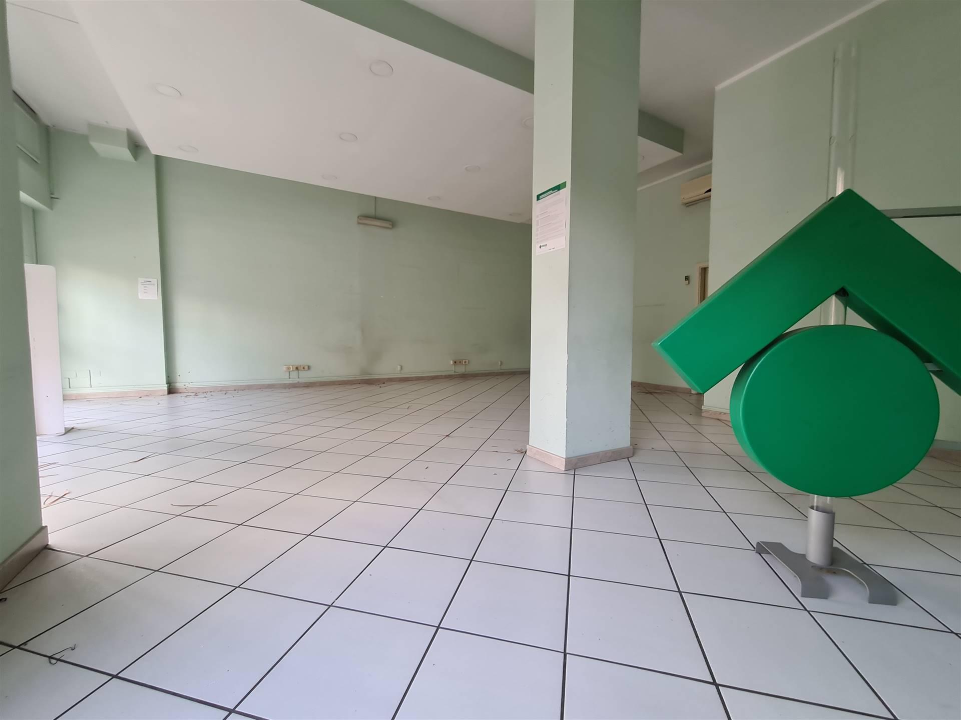 LF238-Locale Commerciale-SANTA-MARIA-CAPUA-VETERE-Viale-Kennedy