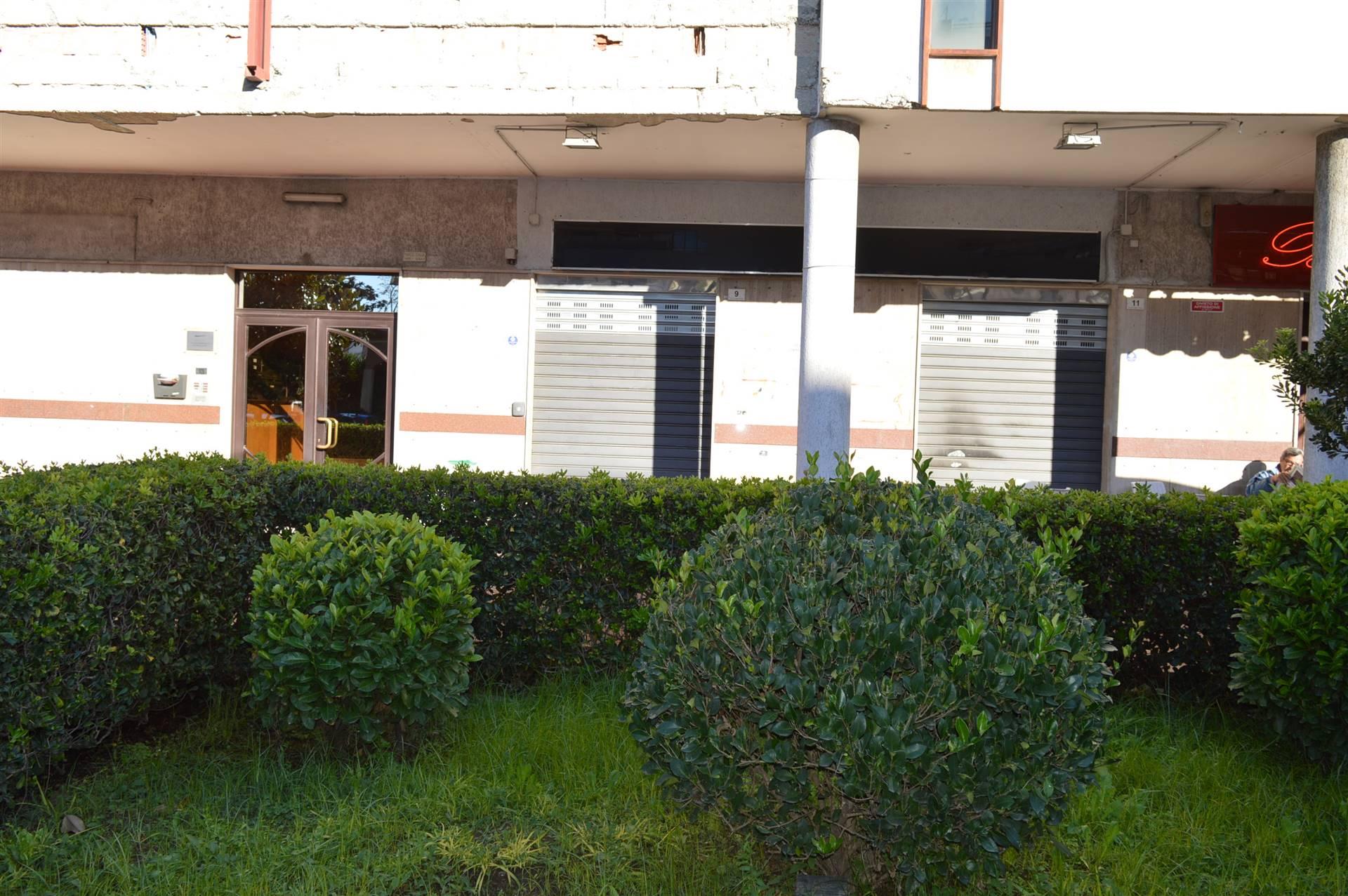 LF205C-Locale Commerciale-SANTA-MARIA-CAPUA-VETERE-Viale-Consiglio-d'Europa