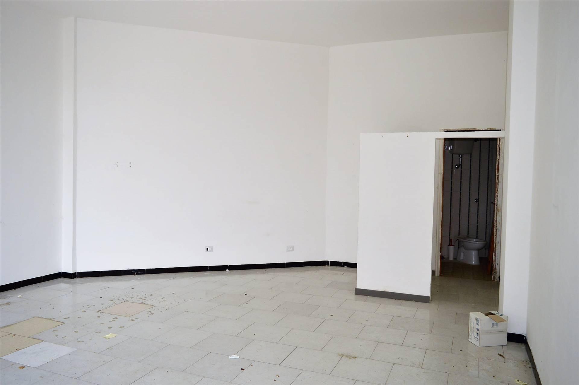 LF179D-Locale Commerciale-SANTA-MARIA-CAPUA-VETERE-Via-Jan-Palach
