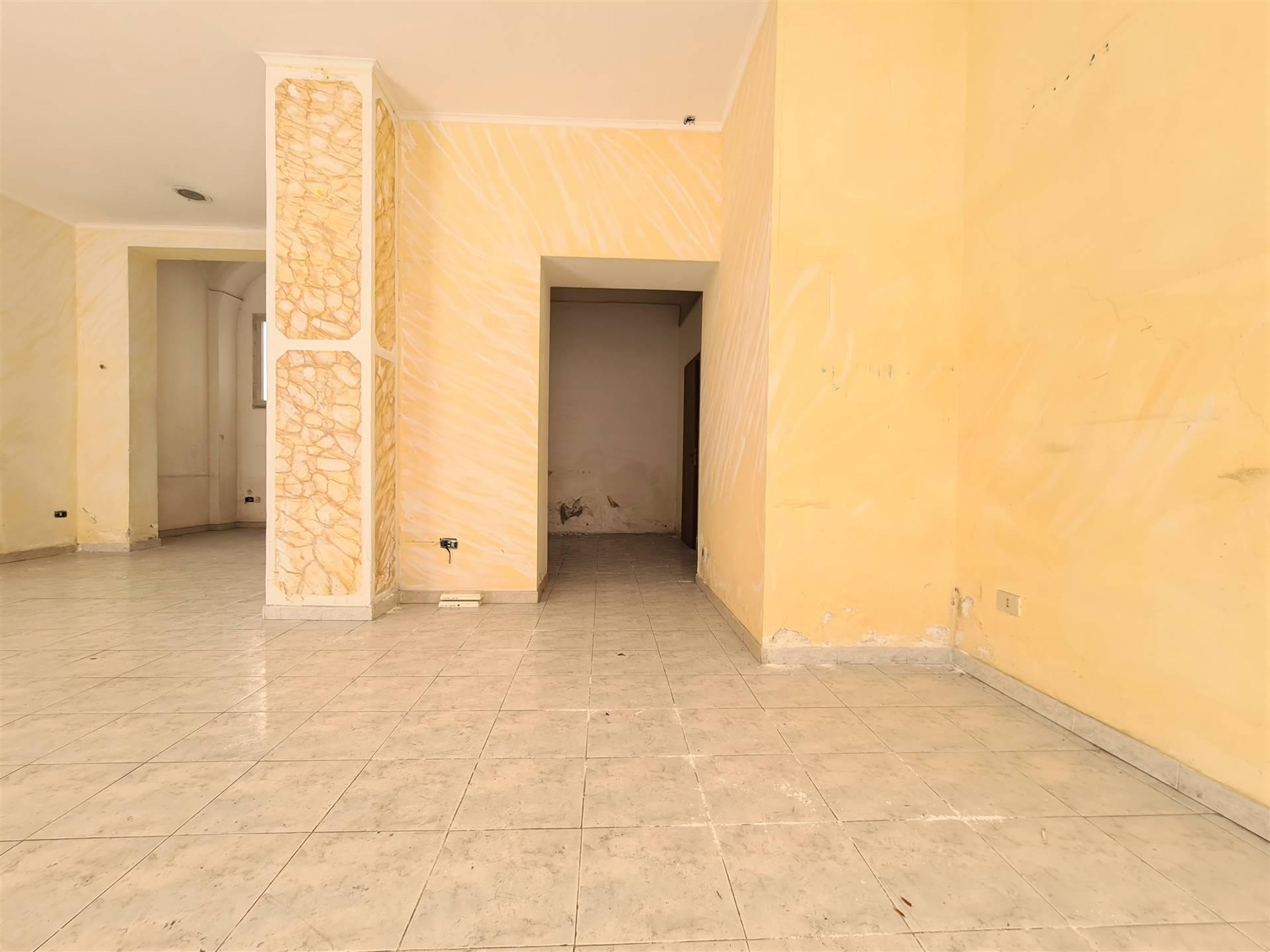 LF207D-Locale Commerciale-SANTA-MARIA-CAPUA-VETERE-Via-Mazzocchi-