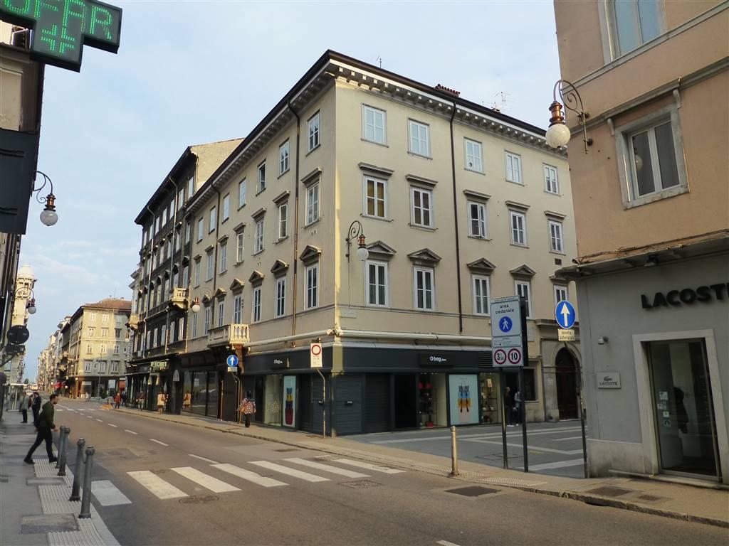 Appartamento in affitto a Trieste, 10 locali, zona Zona: Centro, prezzo € 1.750 | CambioCasa.it