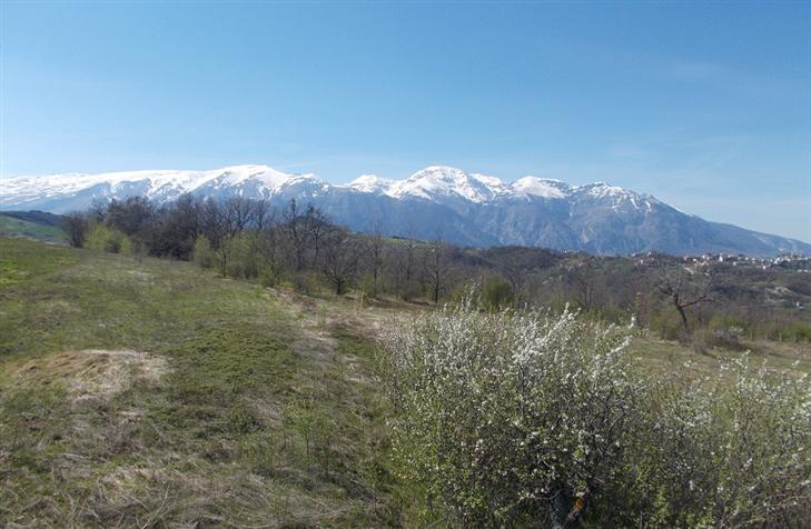 Panorama/Landscape
