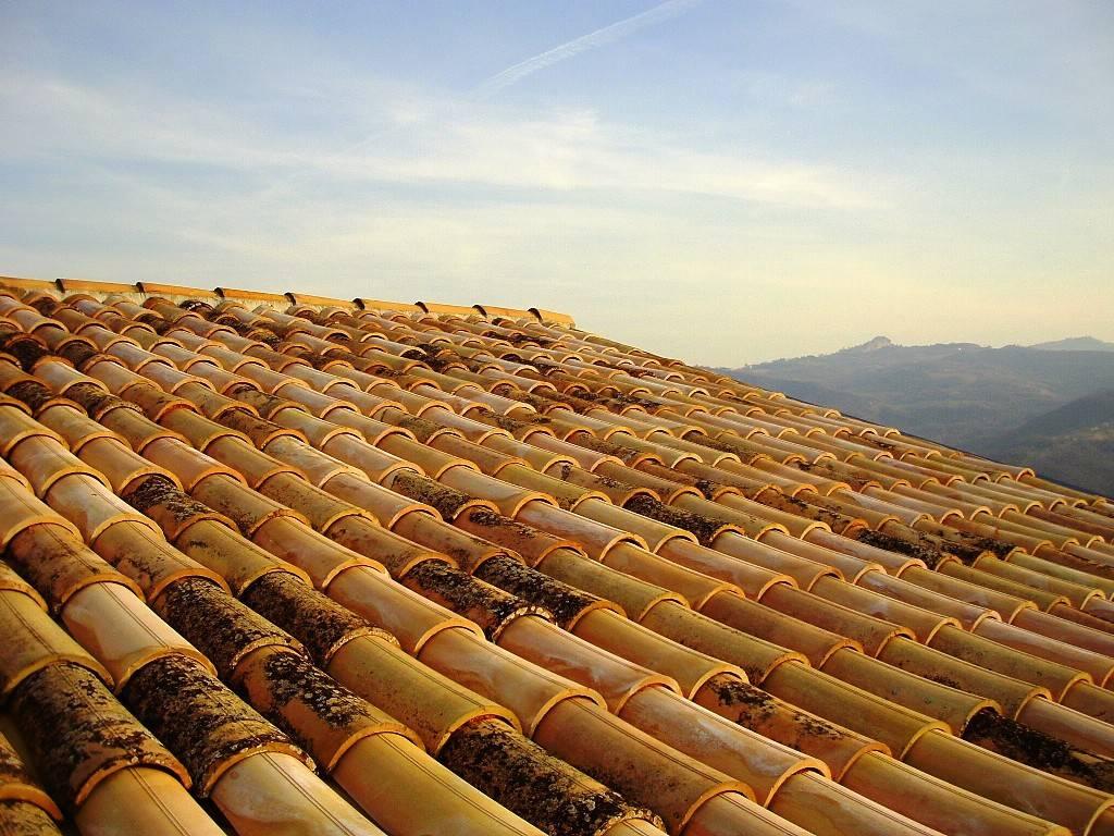 dettaglio tetto nuovo/new roof detail