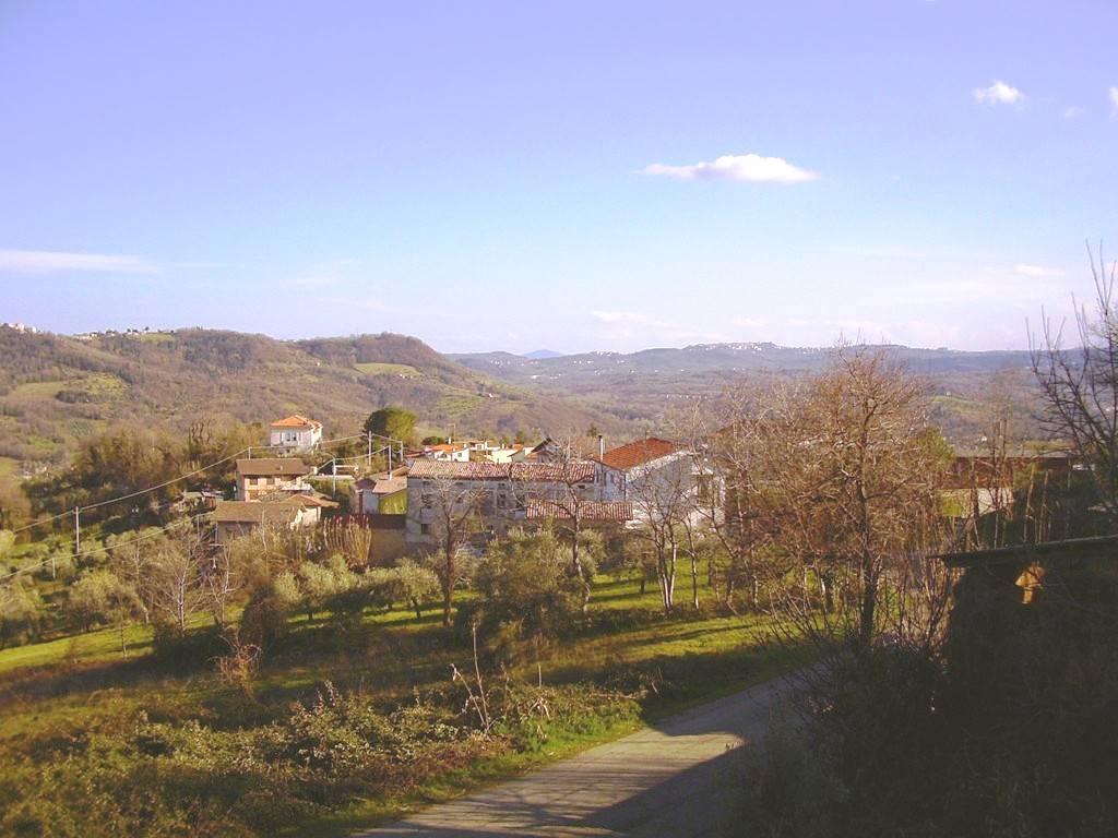Vista panoramica/view