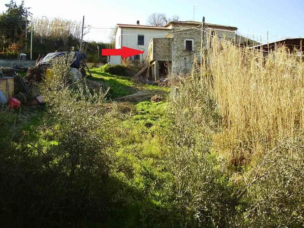 Giardino e rustico/garden and rural building