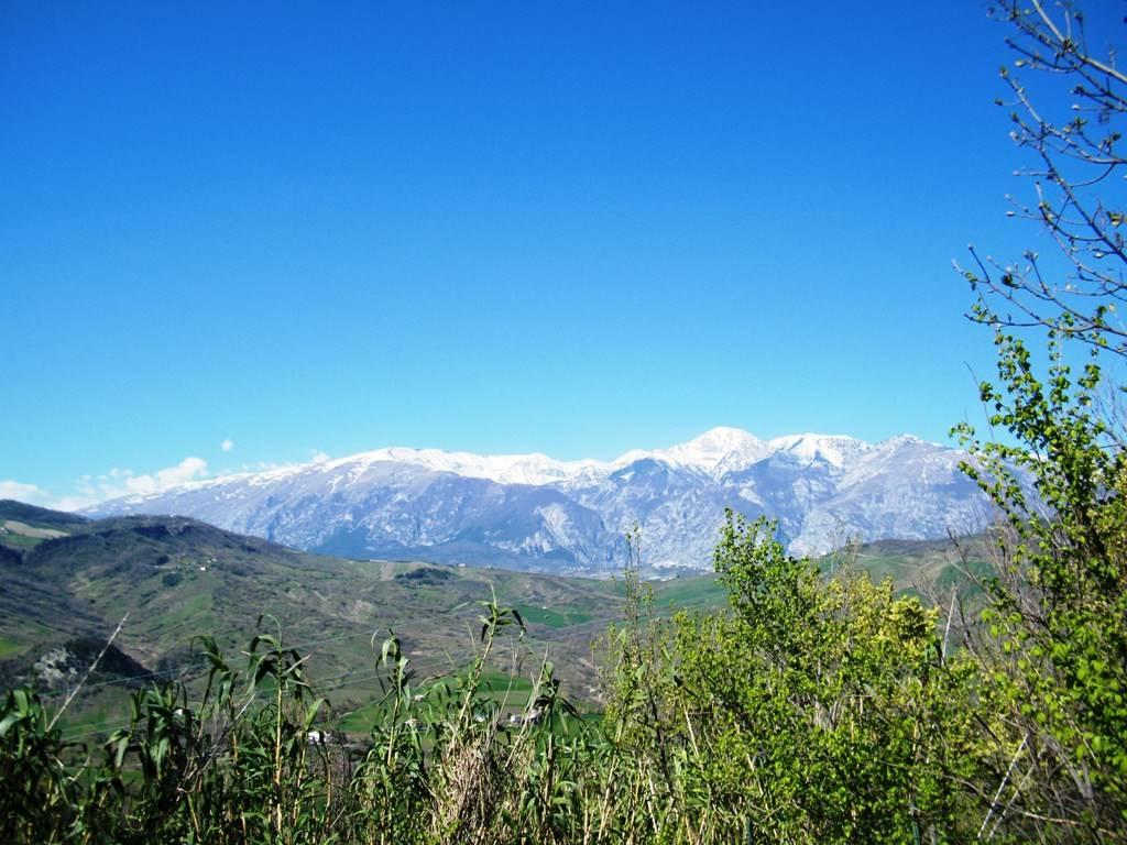 Panorama/views