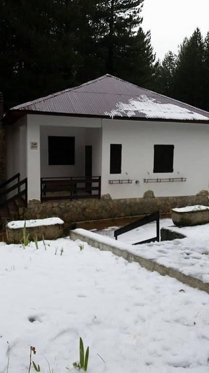 Villa, Camigliatello Silano, Spezzano Della Sila, in ottime condizioni