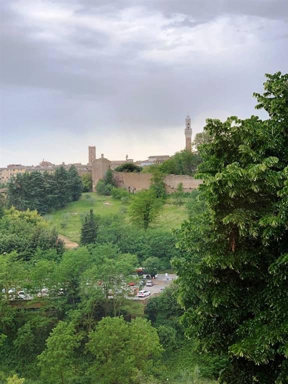 Appartamento in affitto a Siena, 3 locali, zona Località: RAVACCIANO / MAZZINI, prezzo € 700 | CambioCasa.it