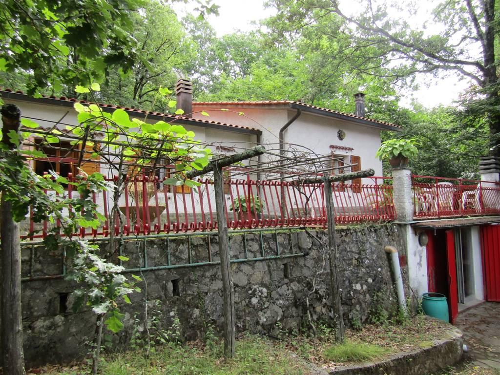 Appartamenti ville case e immobili in vendita a pistoia for Case in vendita pistoia