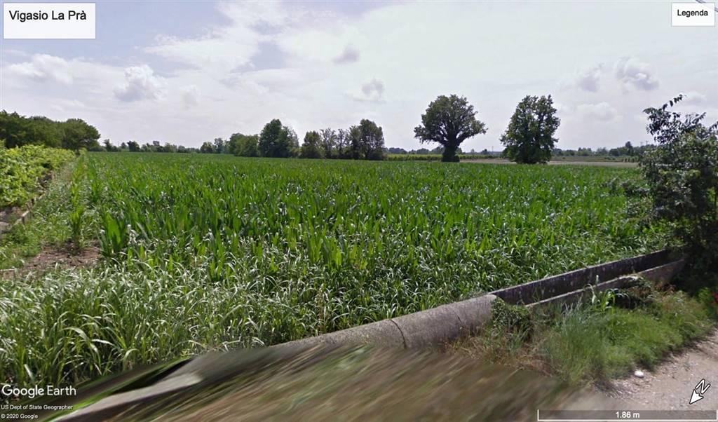 Terreno Agricolo in vendita a Vigasio, 9999 locali, prezzo € 125.000   CambioCasa.it