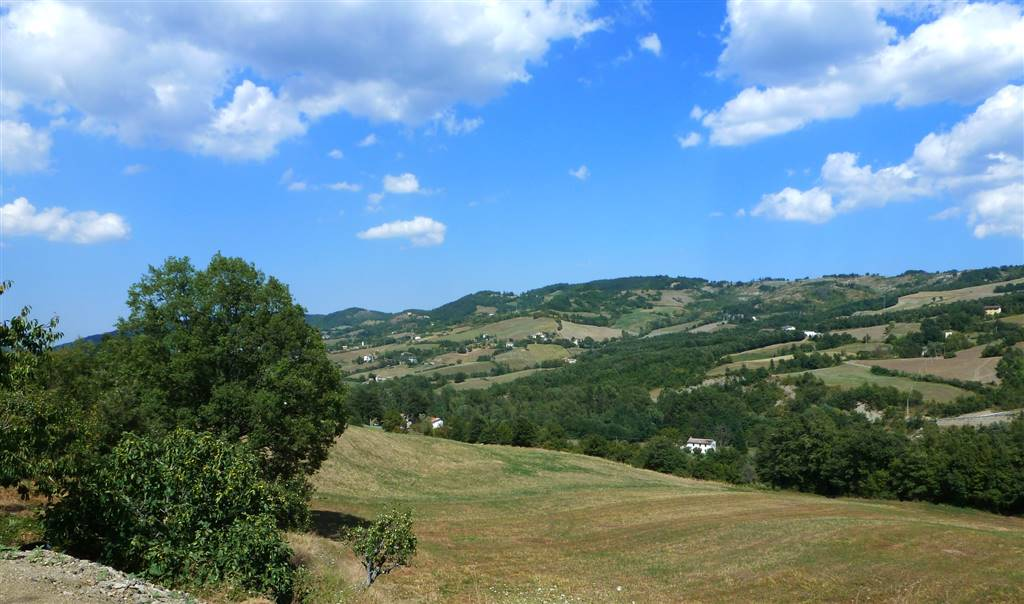 FotoCasale appennino tosco emiliano terreno