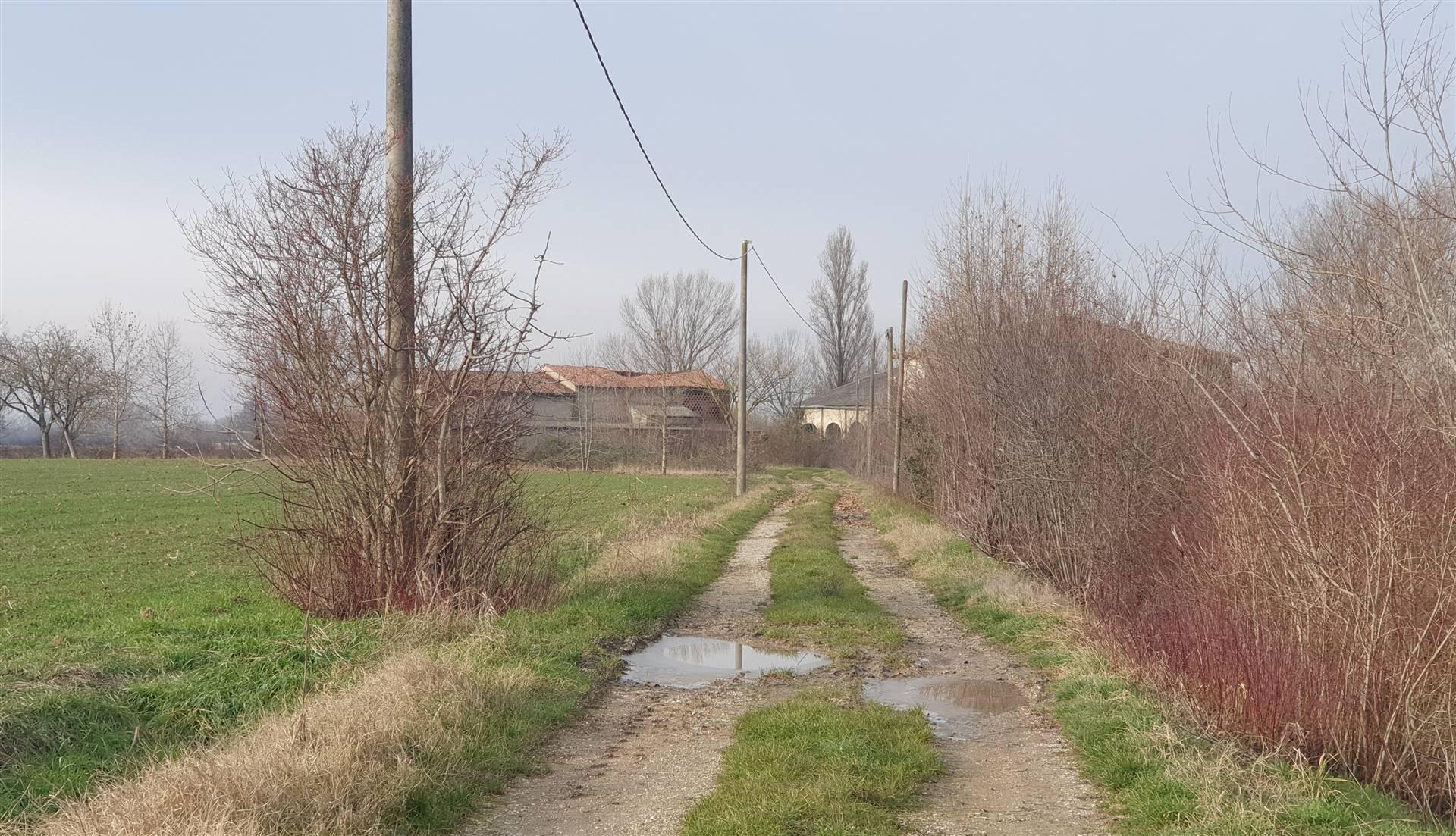 Rustico / Casale in vendita a Borgo Virgilio, 20 locali, zona Località: SCORZAROLO, Trattative riservate   CambioCasa.it