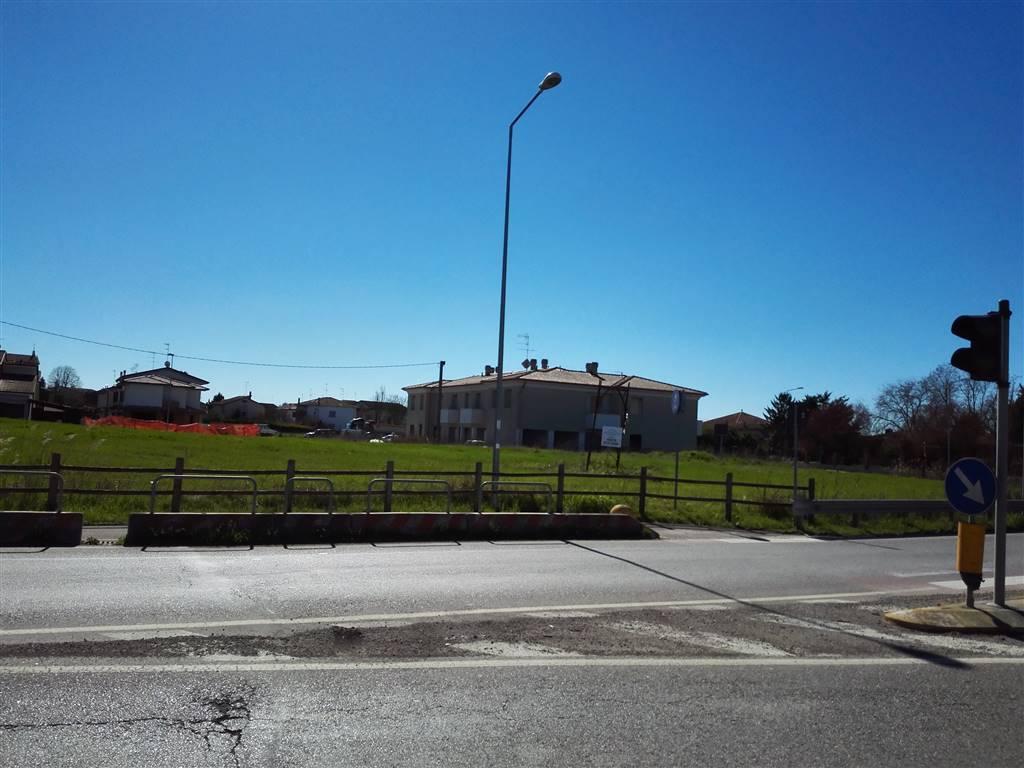 POLESINE, PEGOGNAGA, Terreno edificabile in vendita di 4000 Mq, Classe energetica: Non soggetto, posto al piano Terra, composto da: , Trattativa