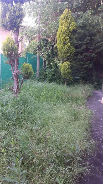 Casa singola, Guastalla, abitabile